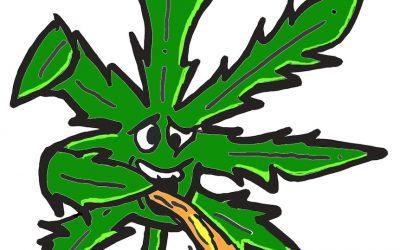 Cannabis-Patienten droht Entzug des Sorgerechts!